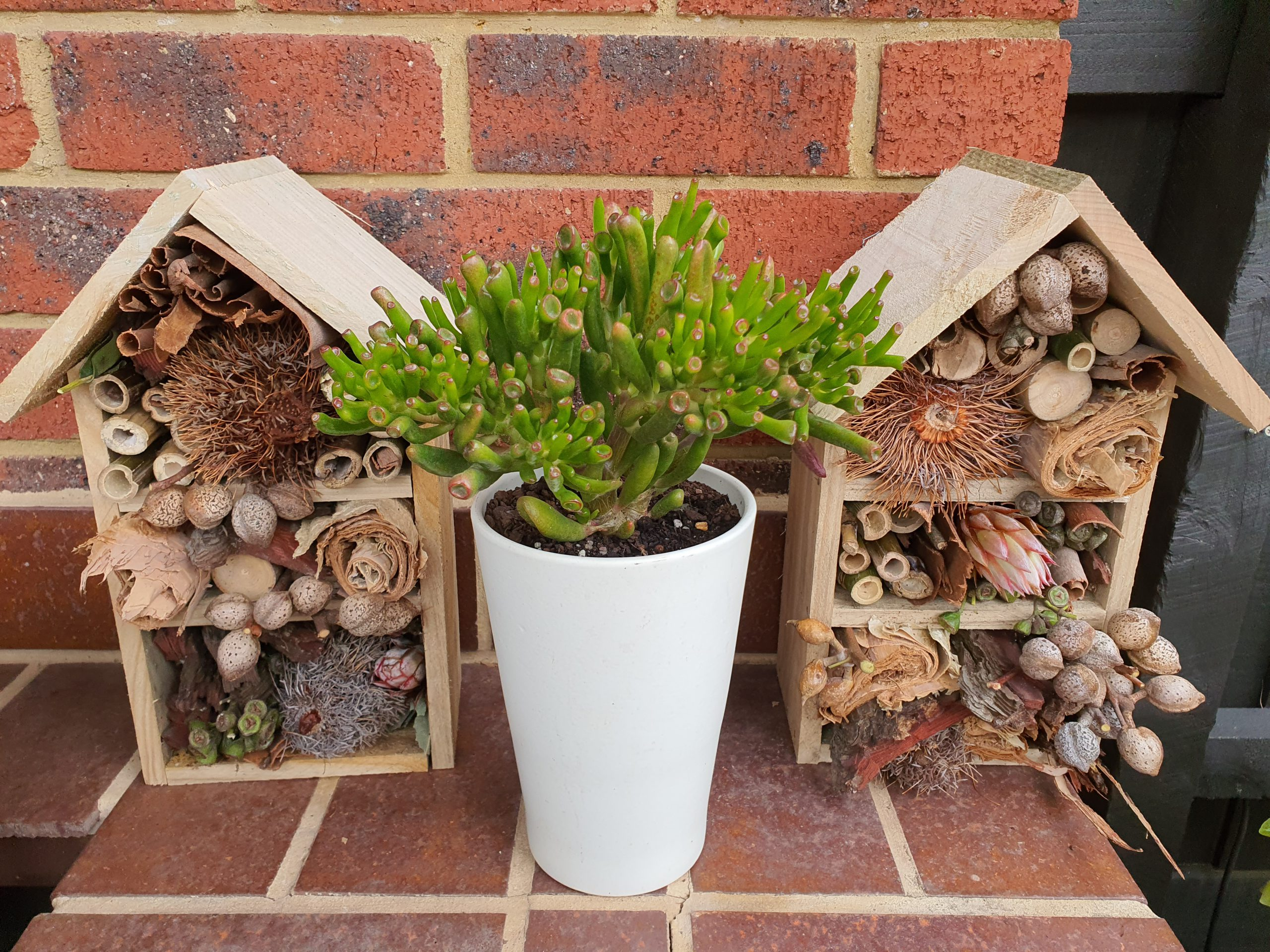 A picture of two bug hotels on brick pillar.